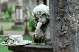 cimiterobonaria__1
